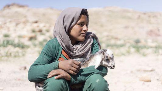 How I got the shot: Yulia Denisyuk on capturing the daily life of Jordan's Bedouin nomads