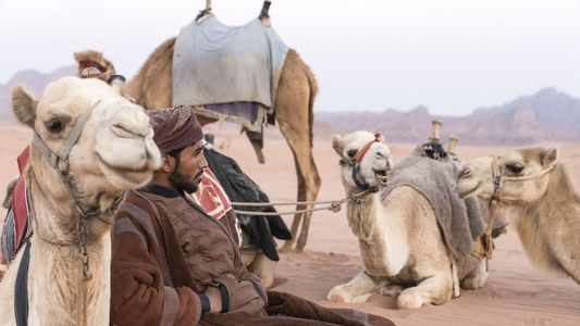 Photo story: the nomadic Bedouins of Jordan