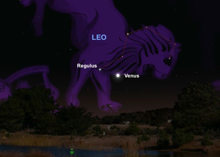 """Brilliant planet Venus will meet Regulus, the """"heart"""" of the constellation Leo, on July 9."""