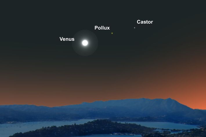 Bright Venus will form a line with the twin stars of the constellation Gemini on June ...