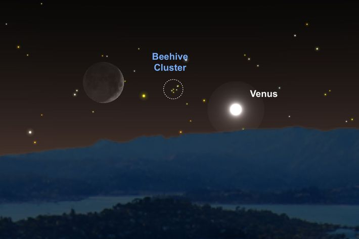 Venus and the moon will act as guideposts for finding the Beehive Cluster on June 16.