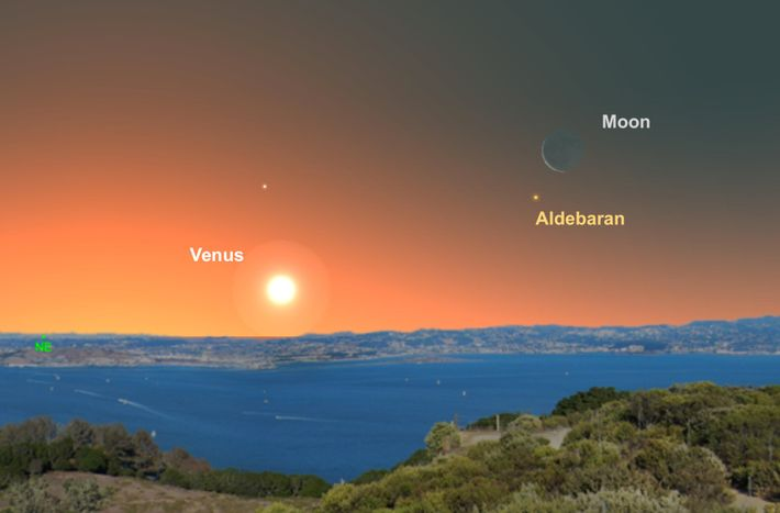 The crescent moon will help viewers find the star Aldebaran in the predawn skies of June ...
