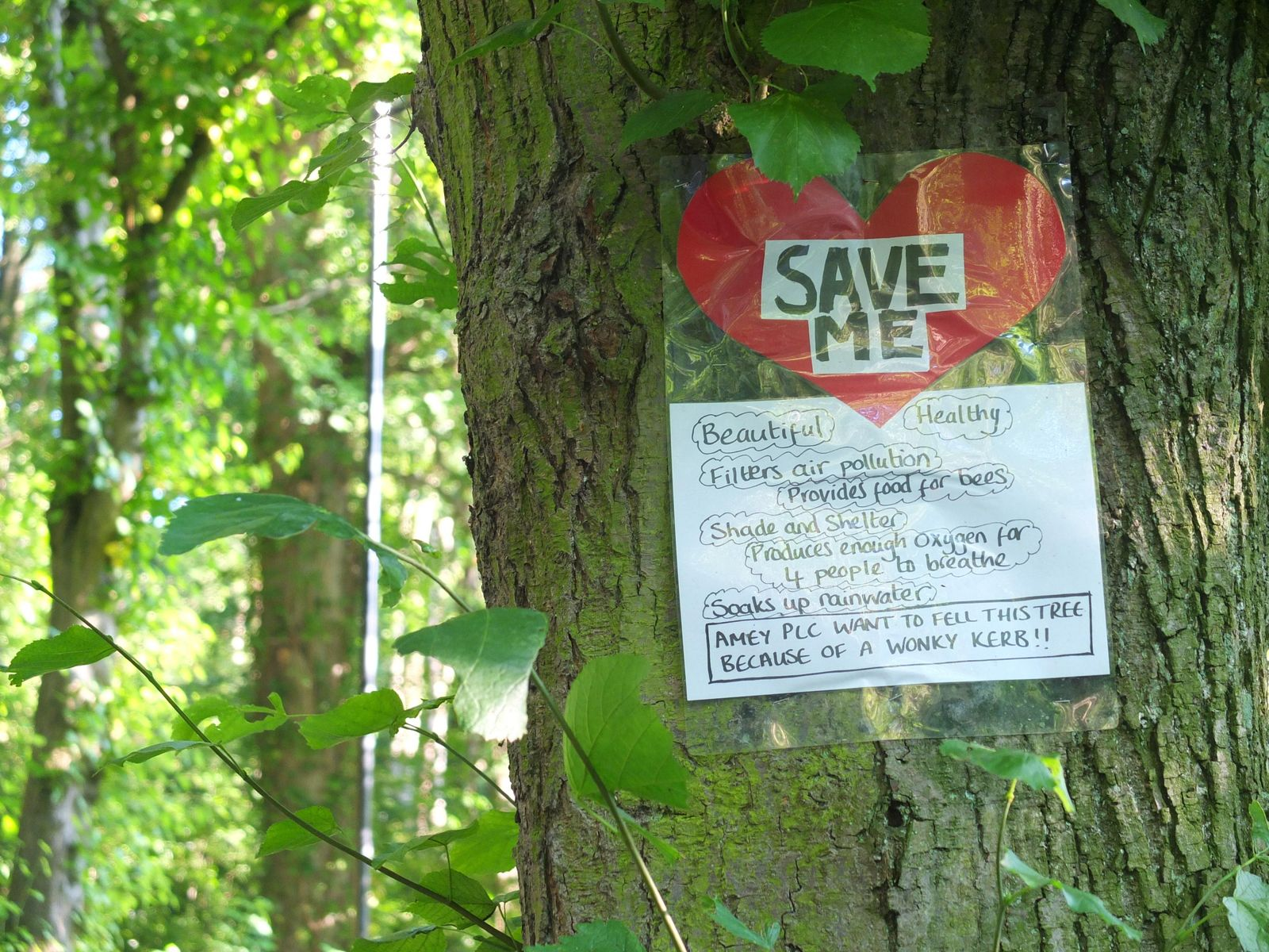 A protest sign adorns a tree on Rivelin Valley Road, Sheffield, 2017. Justified as part of infrastructure improvements ...