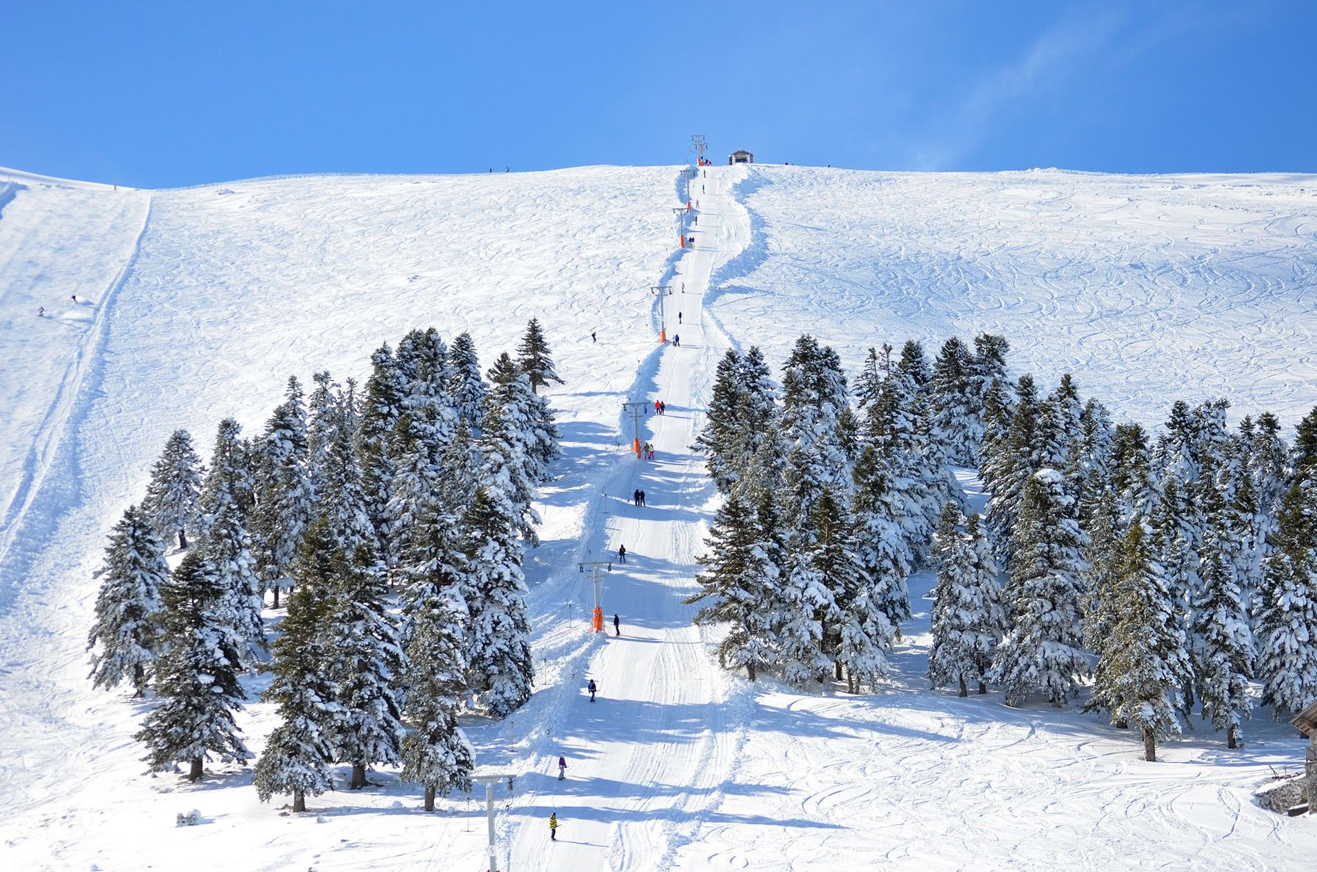 Vasilitsa is home to some of the longest ski runs in Greece — 16 are 10 ...