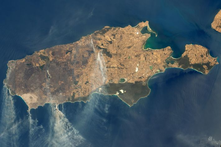A NASA image of Kangaroo Island, showing smoke plumes from the wildfires engulfing this wild, nature-rich ...