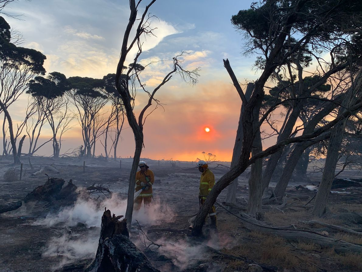 60 hours on burning Kangaroo Island