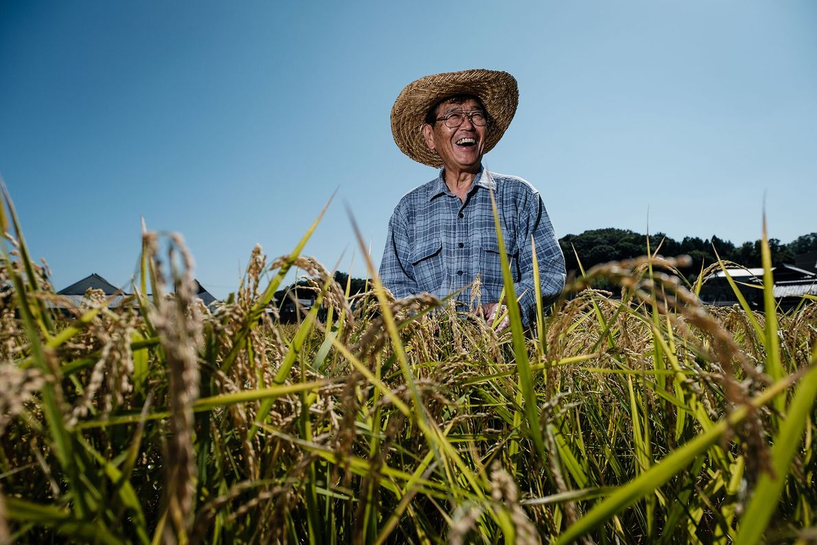 Uera Takashi is an eighth-generation farmer from Hyogo. He's growing gold-standard brewing rice used for sake, the ...