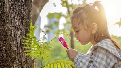 Worried about a coronavirus summer slump? Boost kids' brainpower with nature.