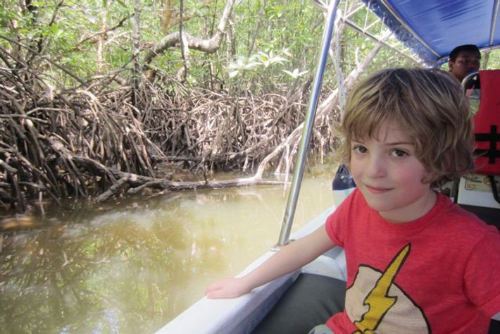 Luca in the mangroves. Image: Maria Pieri