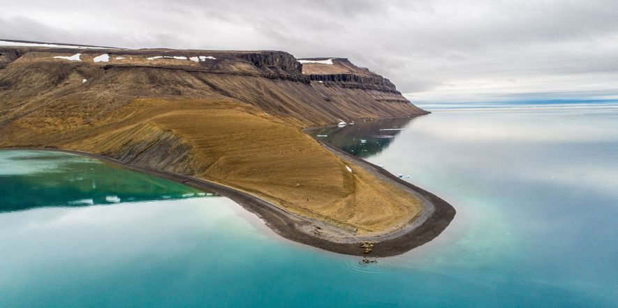 On a nearly ice-free August morning, walruses flop ashore on Devon Island, north of Baffin. Walruses ...