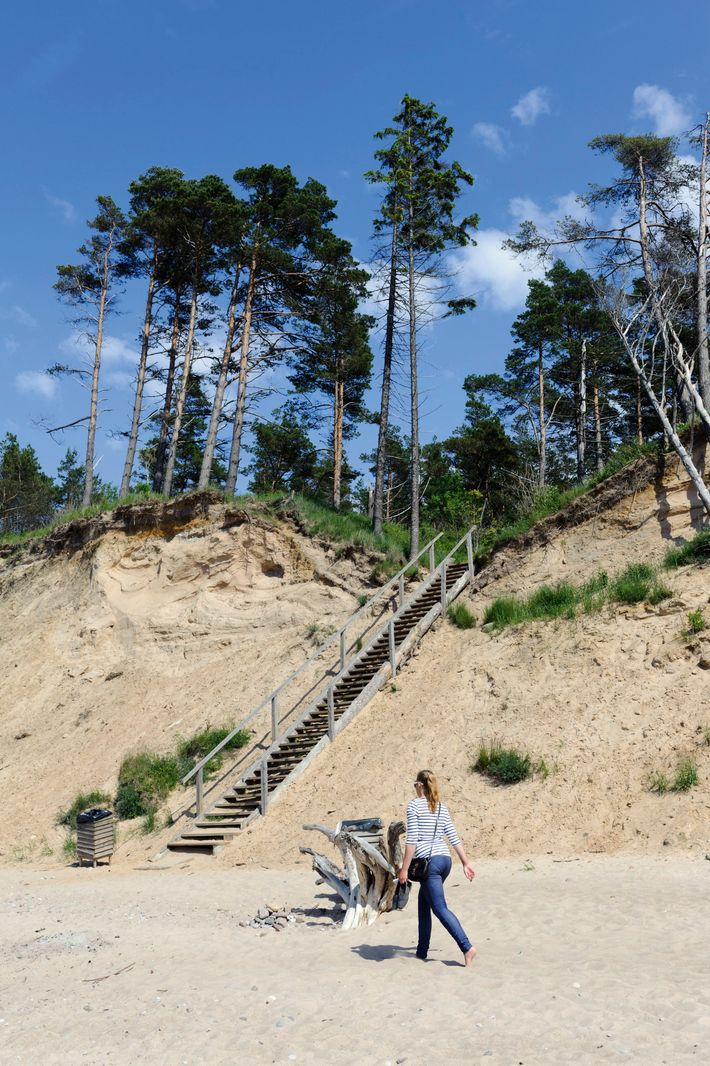 The forest meets the beach at Jūrkalne, a village a short drive west of Kuldīga.