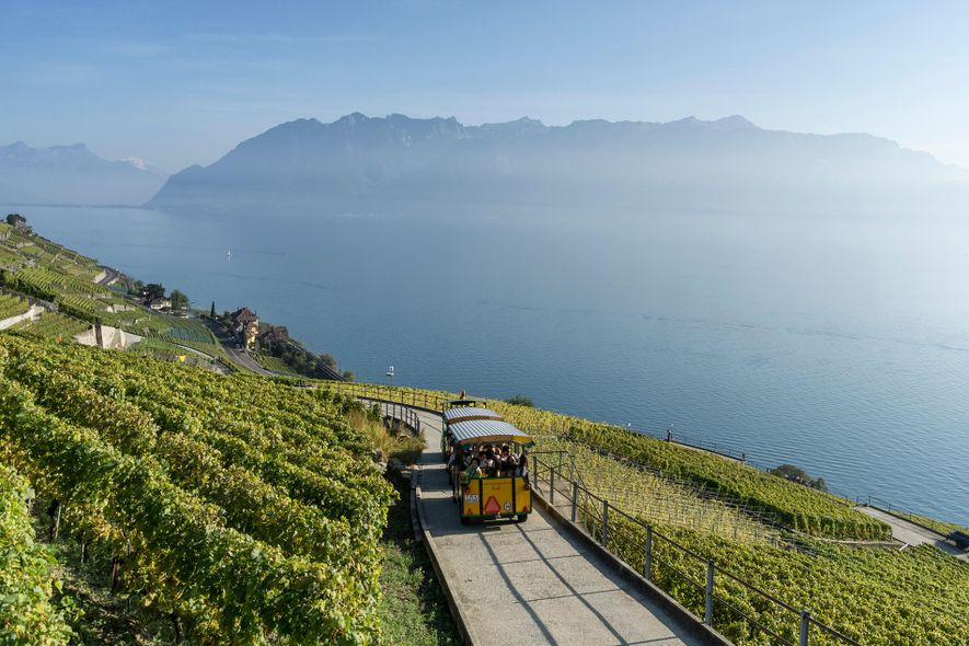 The tourist train, LAVAUX EXPRESS, crosses the slopes of the wine region