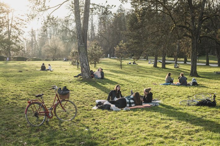 Tivoli Park is a green oasis of cycle paths and manicured lawns for picnicking, slacklining and ...
