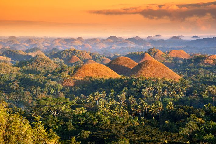 Bohol's iconic Chocolate Hills are surrounded by dense forests full of hiking trails.