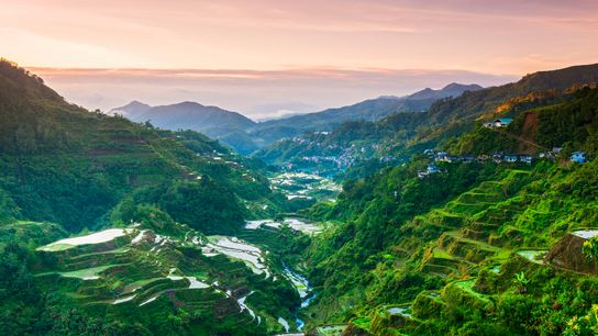 Banaue is famous for its dramatic rice terraces, many of which are thousands of years old.