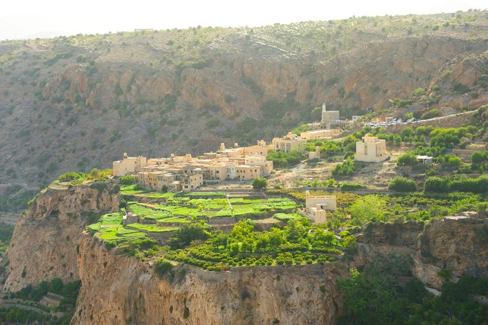 Jabal Akhdar is famed for its maze-like series of wadis and cliff-perched terraced orchards.