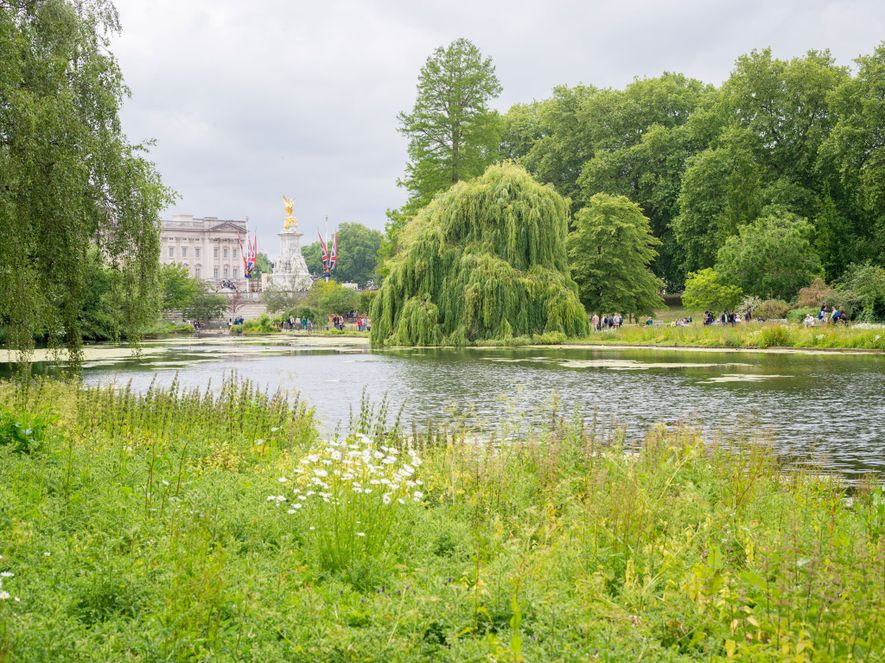 The oldest of the city's eight Royal Parks, St. James's Park offers lovely views.