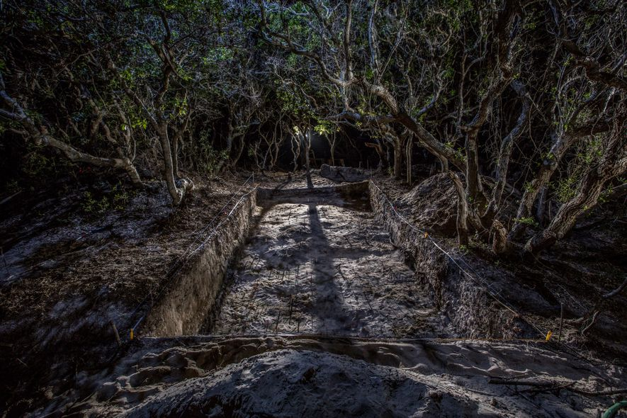 Excavations at the site of a Native American town on Hatteras Island have yielded a mix ...