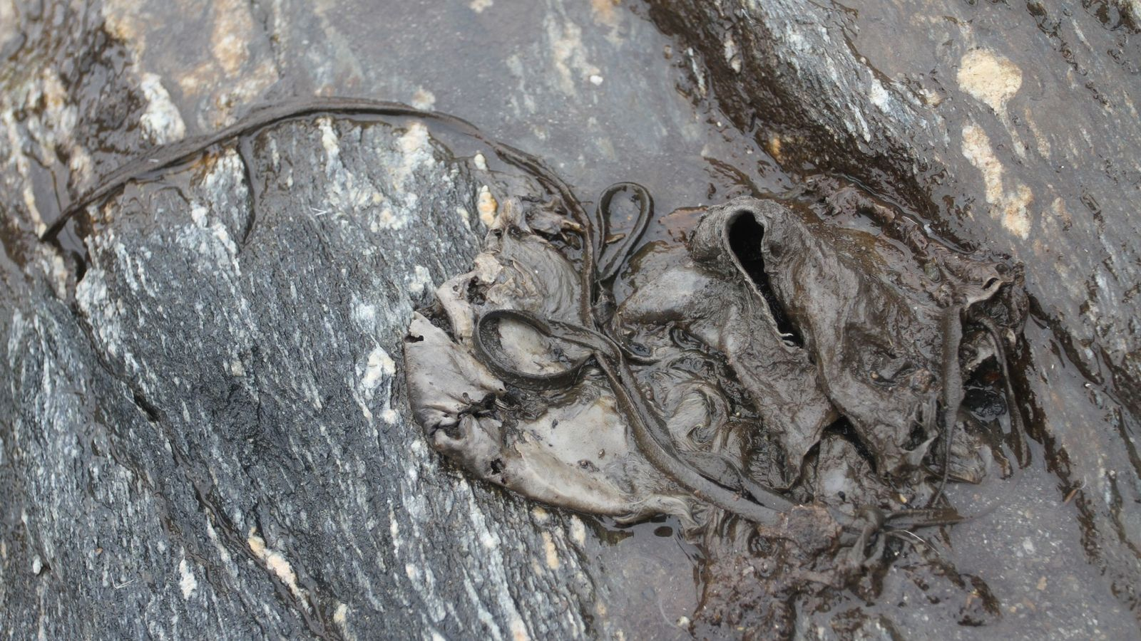 This hide shoe from Lendbreen was radiocarbon dated to the 10th century A.D.