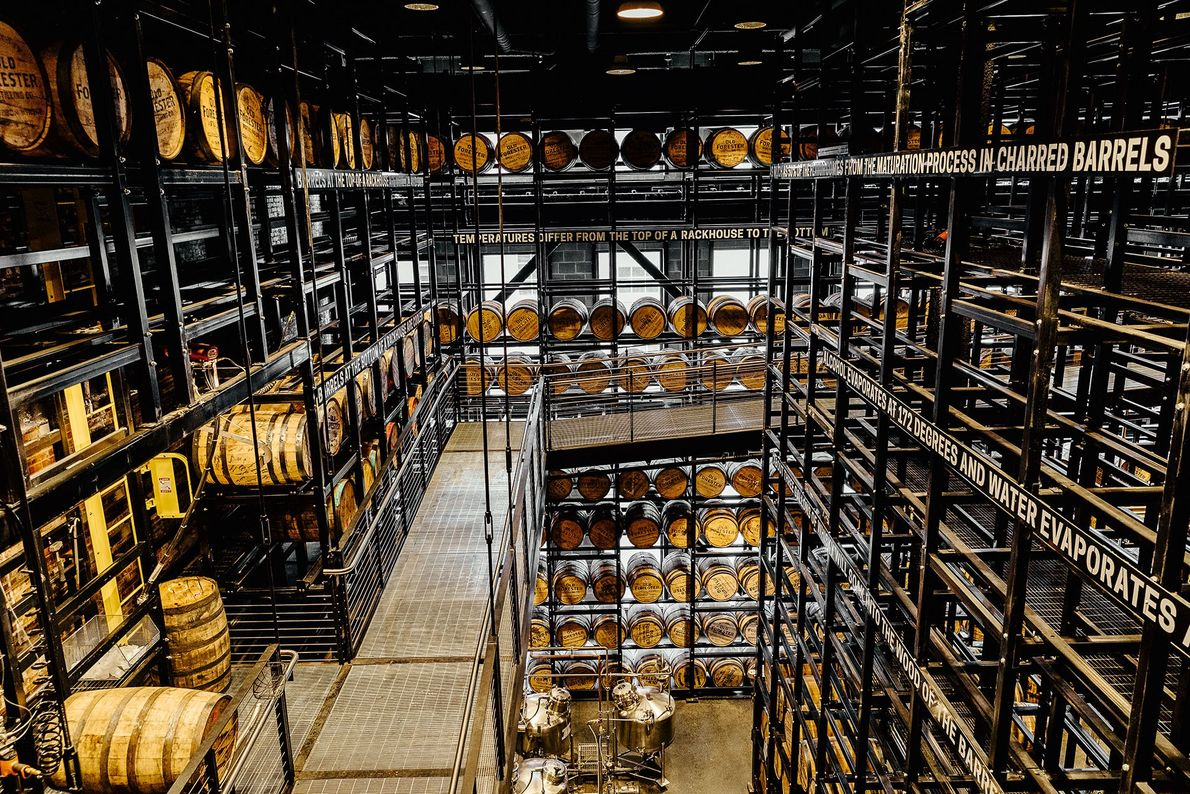 Distillery with barrels of bourbon