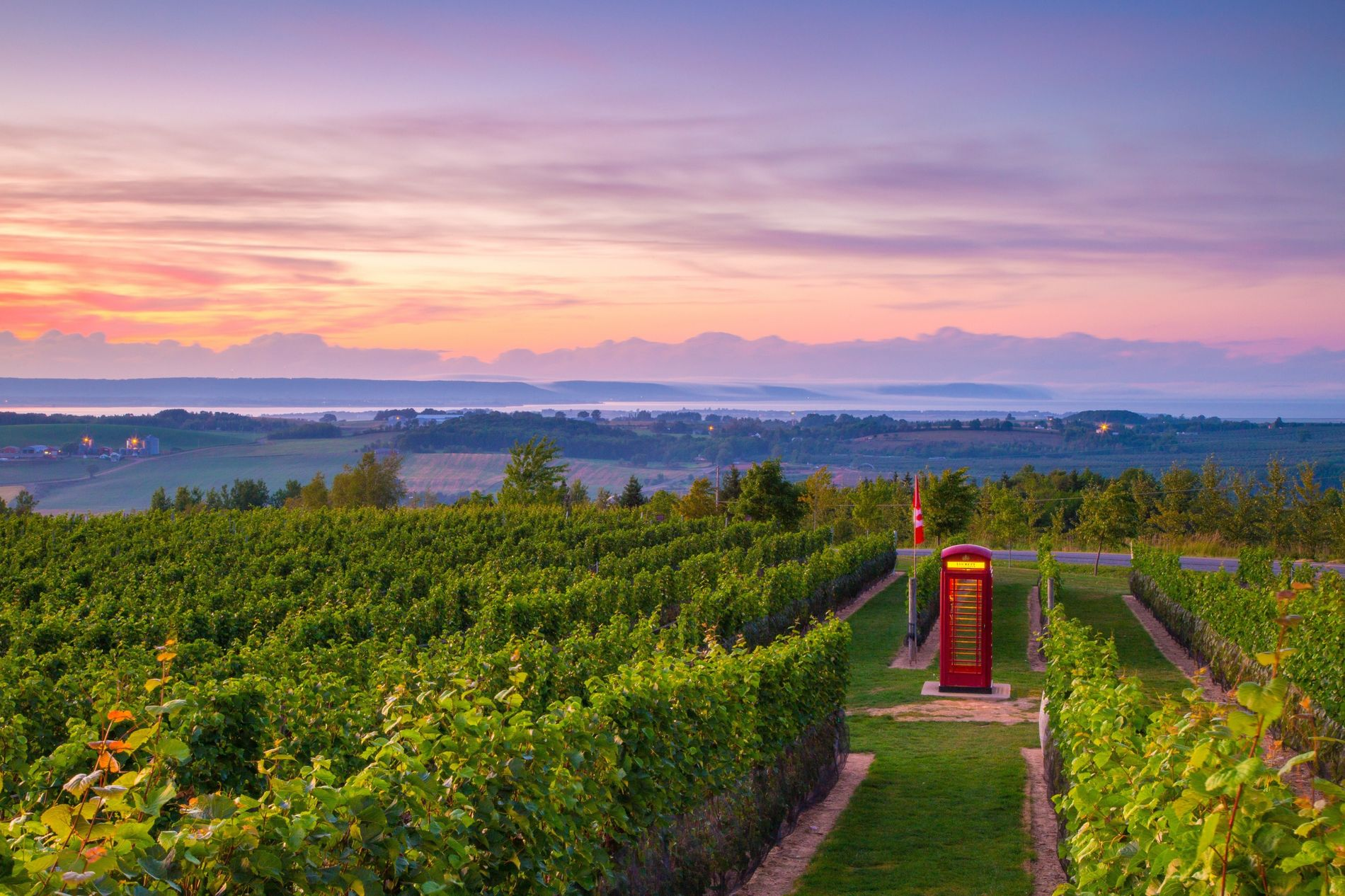 Luckett Vineyards in Wolfville not only offers incredible wines, but it has an authentic English phone ...