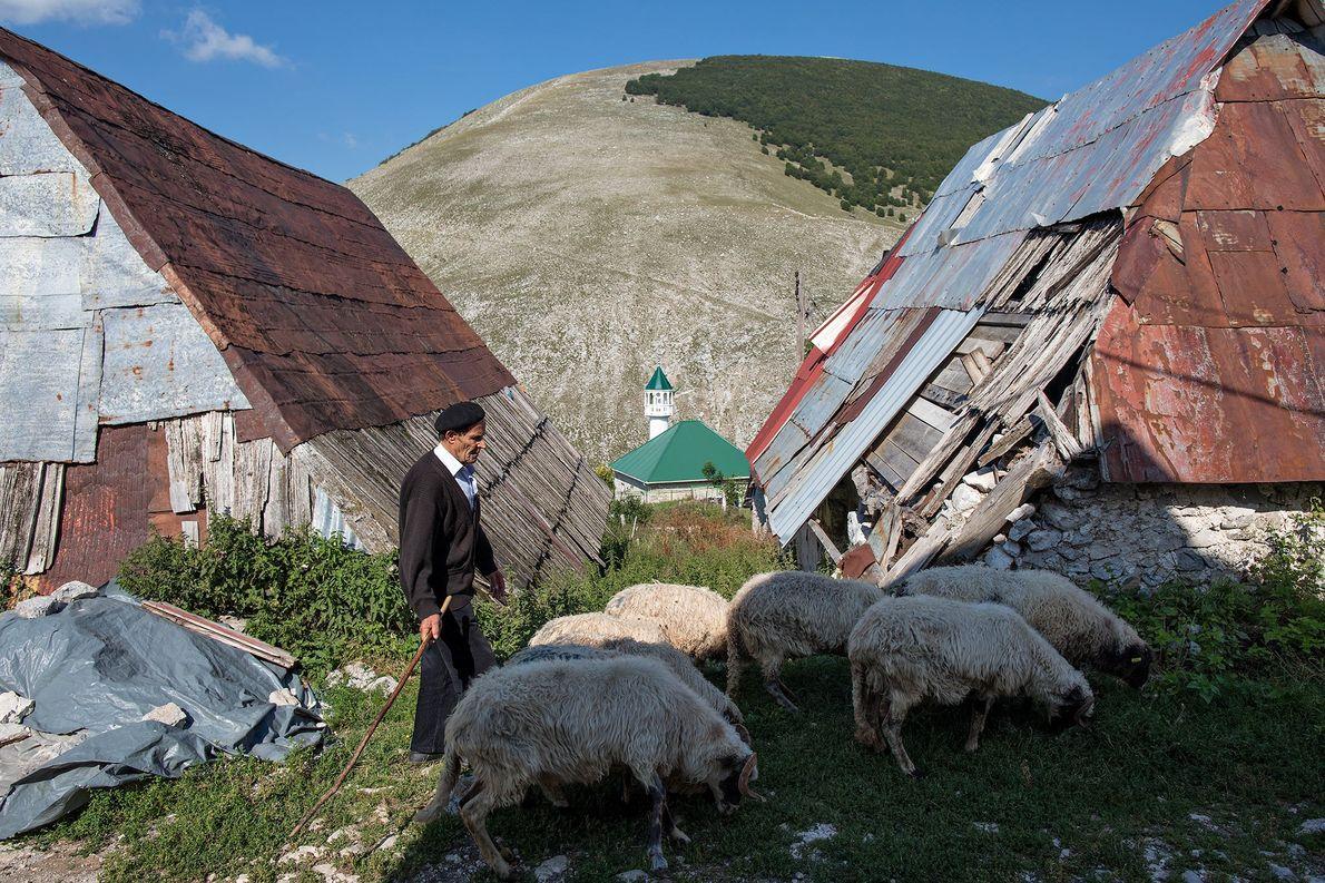A shepherd guides his flock through the village.