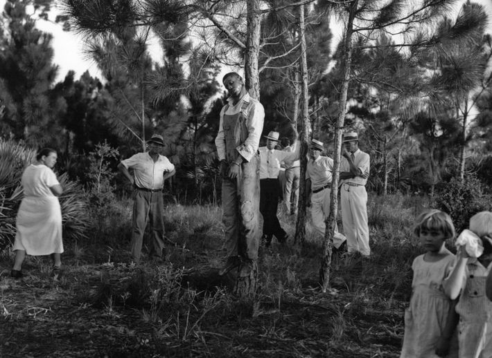 The body of 32-year-old Rubin Stacy hangs from a tree in Fort Lauderdale, Florida on July ...
