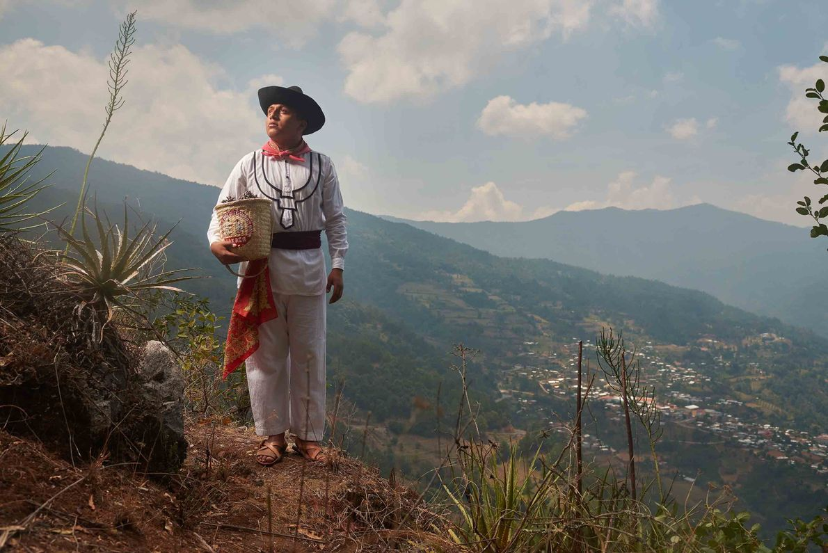 A young man wearing traditional work clothes gathers seeds from the top of Macuil hill.