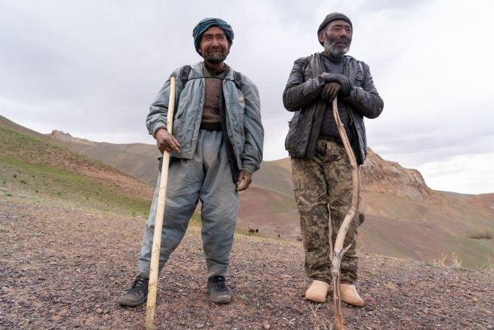 Hazara Shepherds