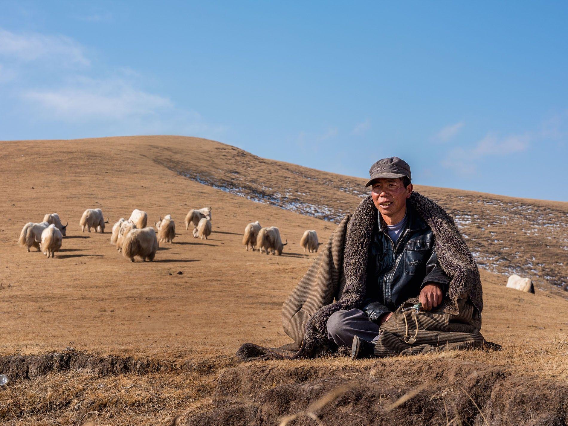 Zhou Hao, nomad.