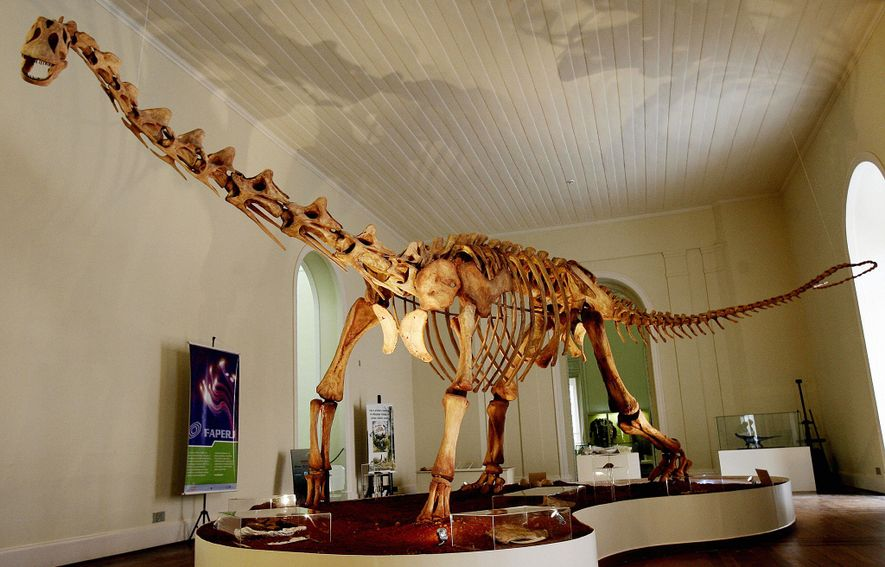 A full-size replica of the dinosaur Maxakalisaurus topai is seen on display at the National Museum ...