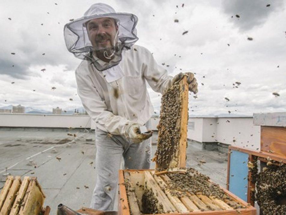 Meet the maker: Gorazd Trušnovec, the Slovenian beekeeper