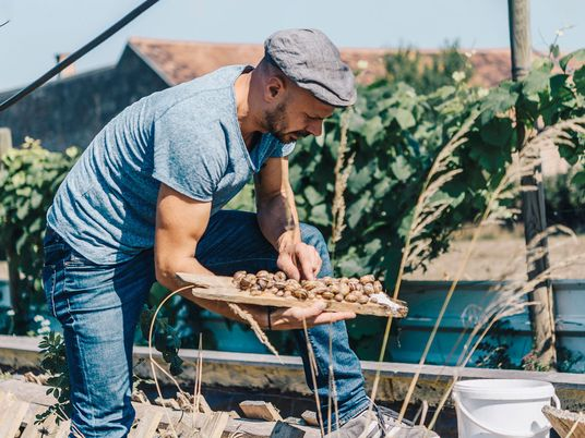 Meet the maker: the farmer reviving Vienna's passion for snails