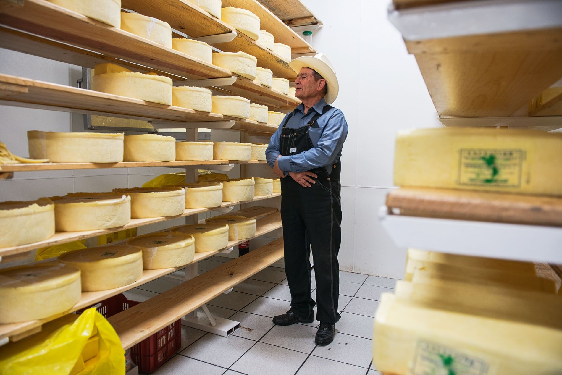 Isaac Enns Wall, manager of Quesería Holanda, inspecting cheeses