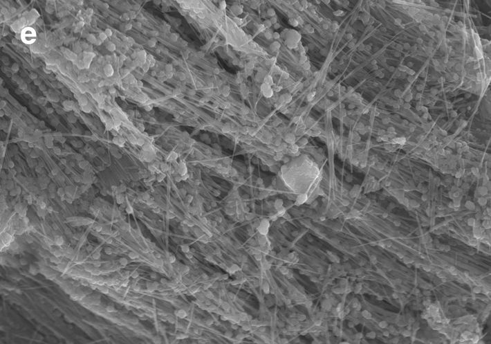 A scanning electron microscopy image of a sample from the Sirena Deep, in which fine-scale filaments ...