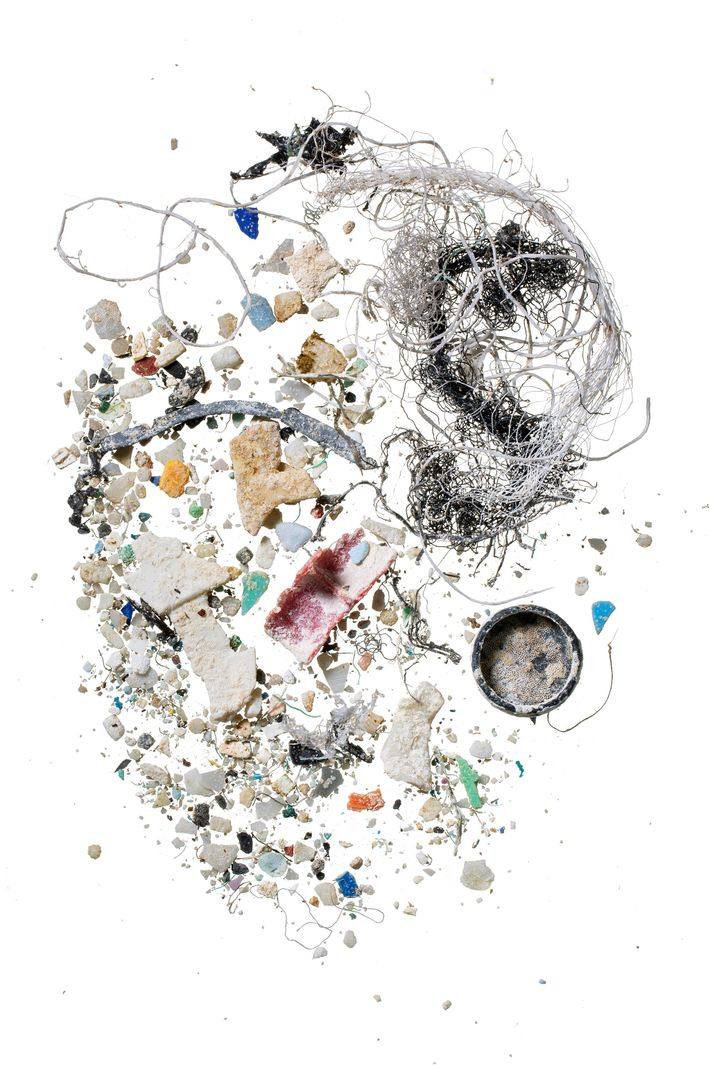 A sample collected off Hawaii contains plastic particles.