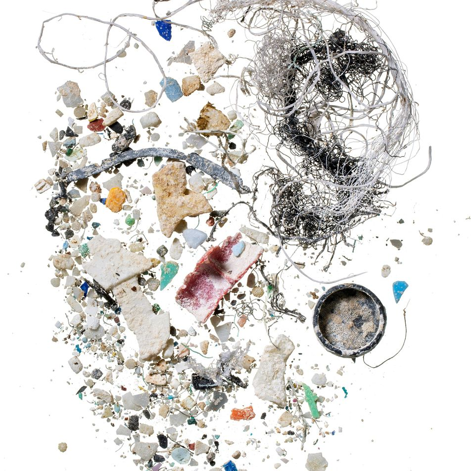 Microplastics have moved into virtually every crevice on Earth