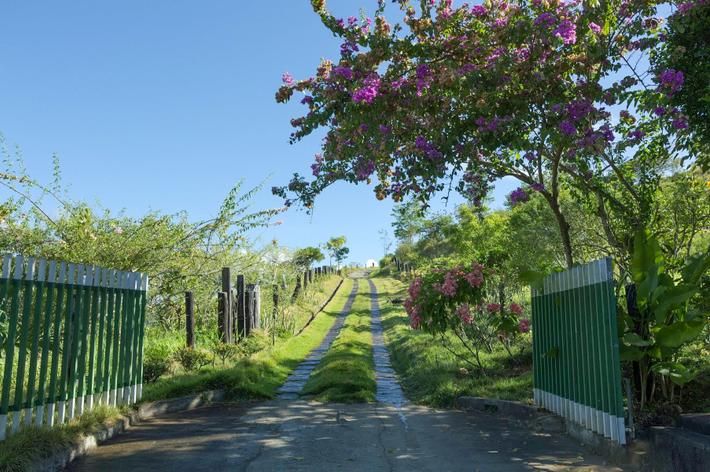 The farm in São Paulo state employs around 40 people, including farmer Marcelo do Nascimento.