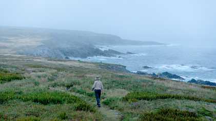 Newfoundland and Labrador: Where Cosmopolitan Meets Ancient History