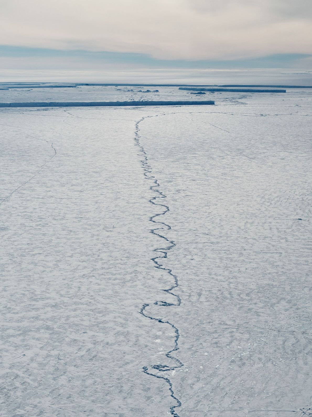 In the Pine Island ice shelf itself, another sinuous crack has started to form.
