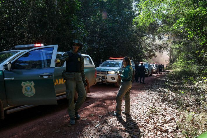 IBAMA agents scoured backroads in Espigão d'Oeste to find timber that had been illegally harvested from ...