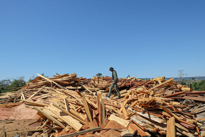 IBAMA inspector Givanildo dos Santos Lima, coordinator of the operation, picks his way across a pile ...