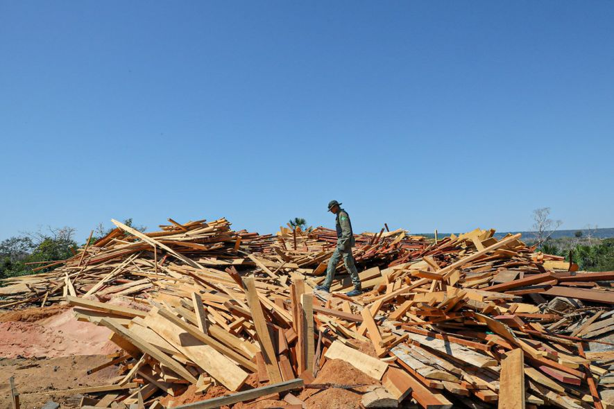 IBAMA inspector Givanildo dos Santos Lima, coordinator of the operation, picks his way across a pile of milled planks at a sawmill outside Boa Vista de Pacarana. The sawmill was shut down after IBAMA inspectors discovered irregularities in its inventories.