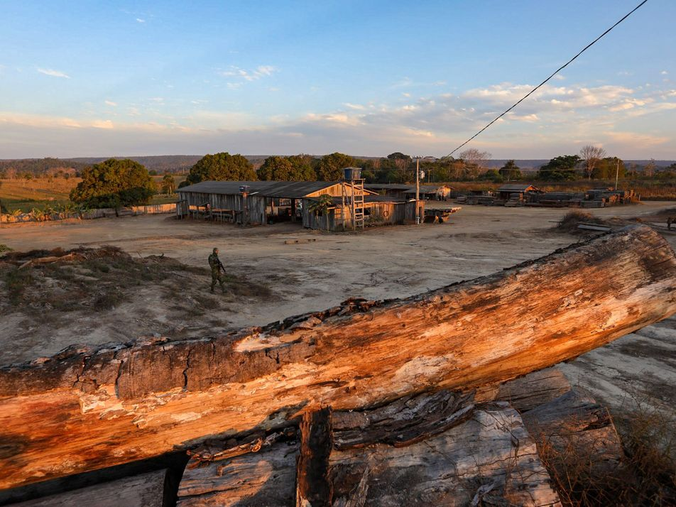 Inside the fight against illegal Amazon logging
