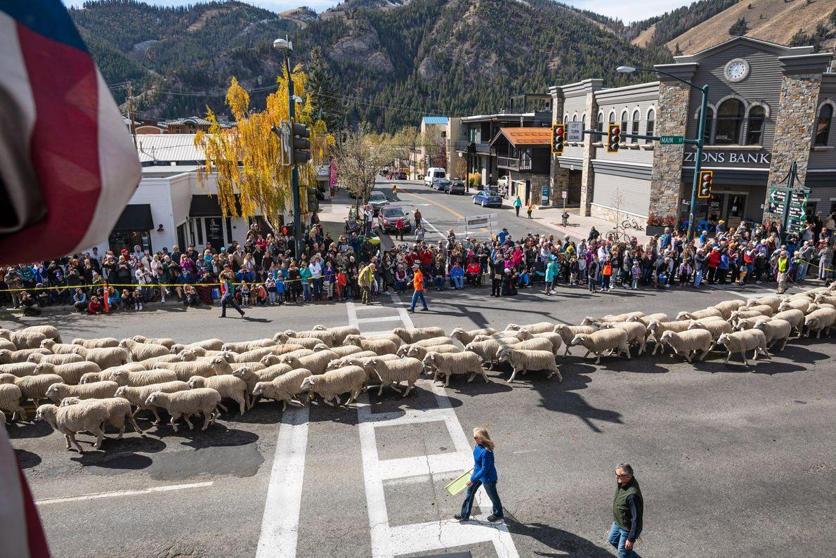Basque Culture in Idaho