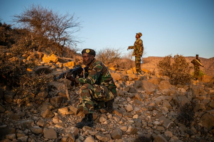 The Somaliland National Army patrols the border with Ethiopia, source of many smuggled cheetah cubs. The ...