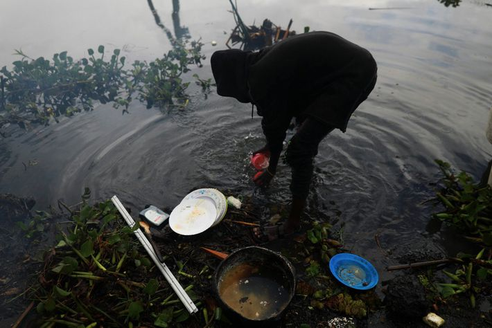 A fisherman washes dishes in Lake Naivasha after a lunch of fresh caught fish.