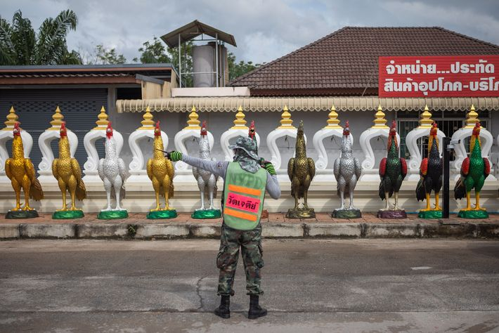 A staffer manages traffic at the entrance to Wat Chedi.