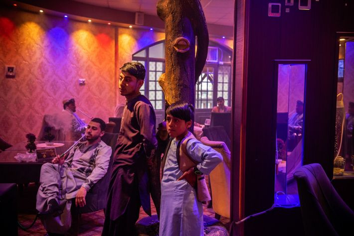 In a suburban development on the outskirts of Kandahar, Cafe Delight entertains businessmen, officials, and boys ...