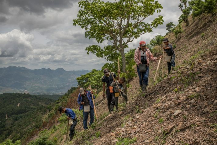 The land in the dry corridor is steep and rocky, making it easy for the fertile ...